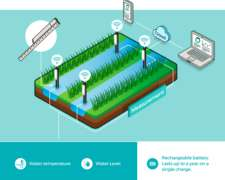 Monitoreo de Nivel del Agua en Campos de Arroz