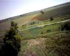 Excelente Campo Agrícola - Maria Luisa, Santa Fe