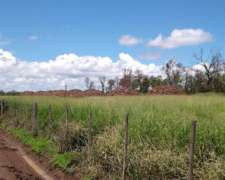 Alquiler Campo Santiago del Estero ( Carbón, Hacienda, Miel)