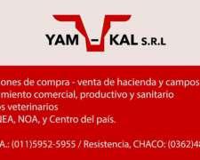 Compra - Venta de Hacienda y Campos