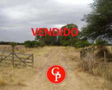 En Venta, 200 Has, Guatrache, la Pampa.-