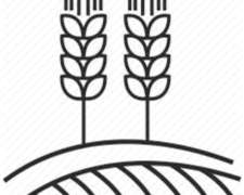 Ursulagis Agricultura de Precisión