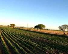 Estancia Cruz del Eje - Ciclo Comp. Ganadería y Horticultura