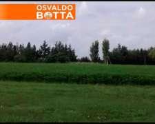 Excelente Estancia Agrícola Bien Armada 4500 Has.
