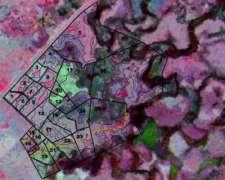 Agricultura de Precisión - Estudio GYD