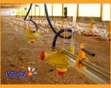 Regulador de Presión para Bebedero Automatico Aves
