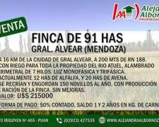 Alejandra Albornoz Vende en Mendoza Finca 91 Has