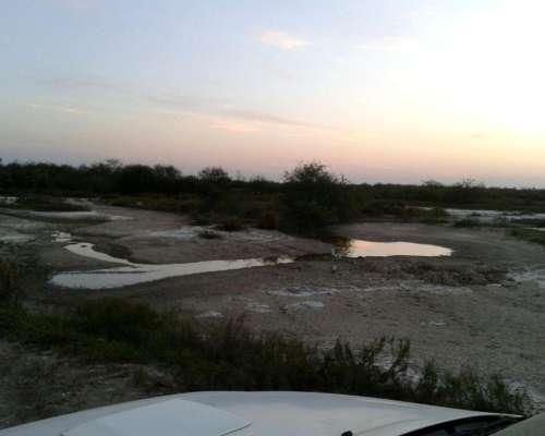 Estancia Formada, a Tranquera Cerrada - Chaco Paraguayo
