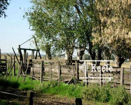 84 Has - Campo en Venta en la Plata