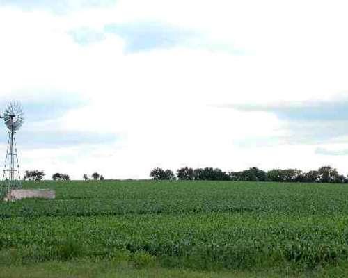 Busco Campo Agrícola para Arrendar - Pcia. CBA Zona Nucleo