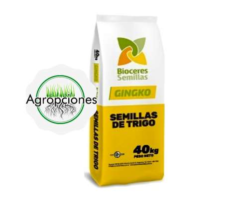Semilla de Trigo Gingko - Bioceres