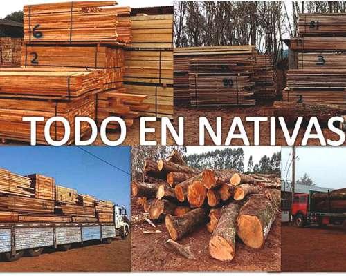 Maderas Nativas Misioneras - Todo Rural - Kit Tranqueras