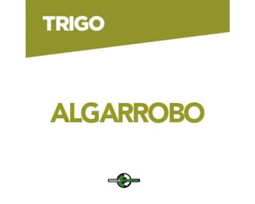 Dm Algarrobo . .