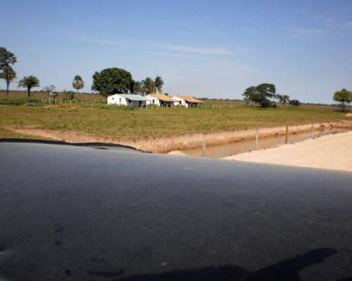 Vta 55.000 Has. Ganaderas en Caceres - Mato Grosso DO Norte