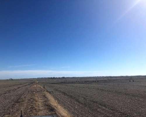 1.700 Has Gualeguaychu, Entre Ríos -agrícola C/riego- Venta