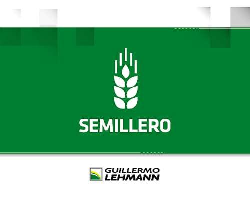 Semillero - Multiplicación, Fiscalización y Tratamiento