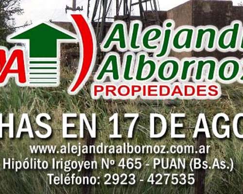 Alejandra Albornoz Campos en 17 de Agosto Partido Puan.