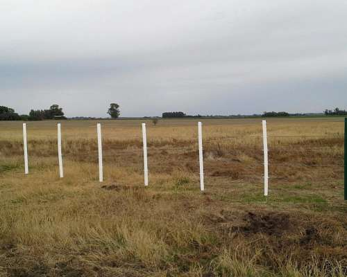 Campo Agricola 100 % 100to , Cel: 2478441992