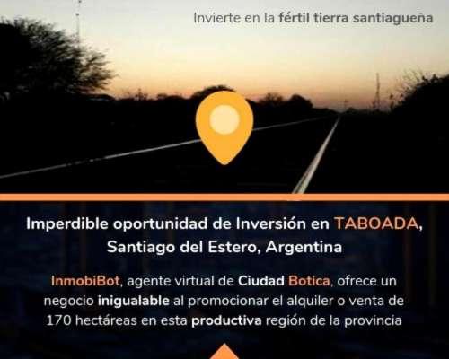 Hectáreas, Excelente Productividad, Santiago del Estero