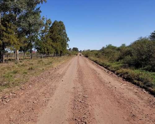 Venta Terreno de 1/2 Hectárea en Mercedes - Corrientes