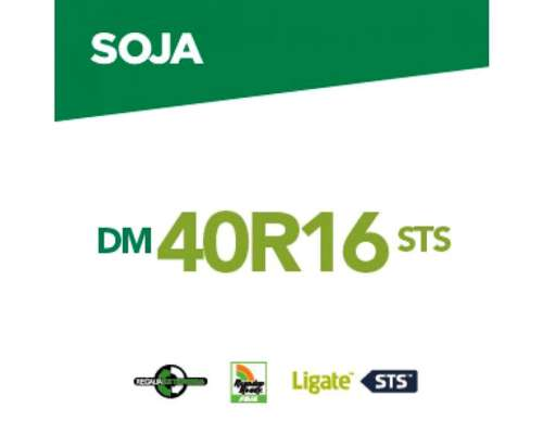 Dm 40r16 Sts .