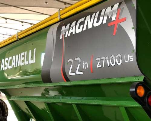 Ascanelli 22 TN. Disponible en Stock, Verde.