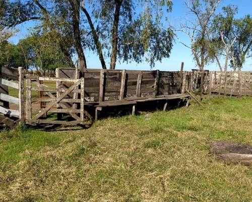 115 Has Agrícolas Colonia el Potrero, Gualeguaychú.