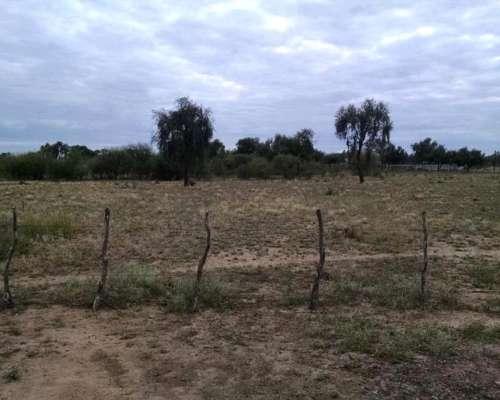 4.200 Ha Ganaderas en la Rioja