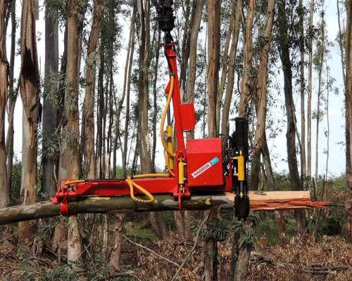 Procesador Forestal Naarva S25 Steeg Master