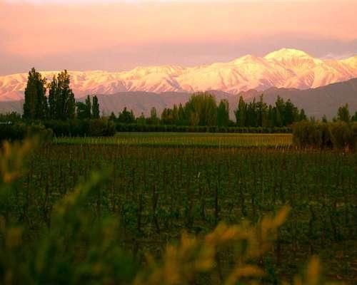 12 Has Finca en Mendoza - Ideal para Desarrollo Urbanístico
