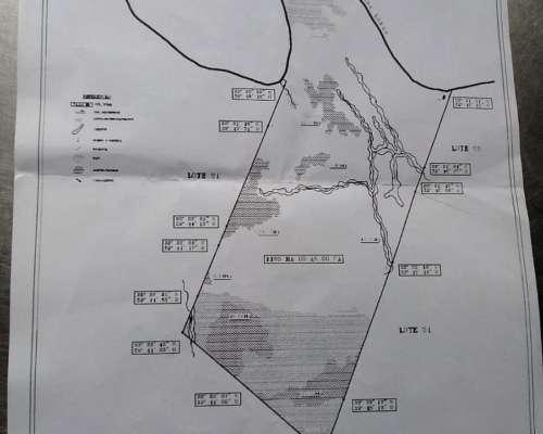 Vendo Campo en Isla las Lechiguanas 1200 Ha