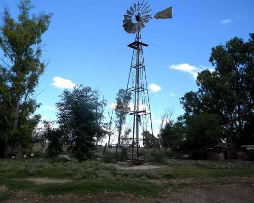 2 Campos (explotación Icticola y Tambo) en Guaminí - BS AS