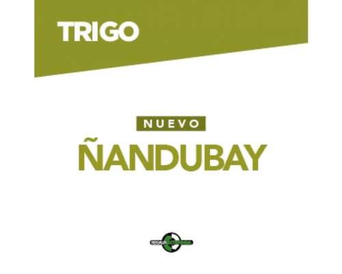 Dm Ñandubay . .