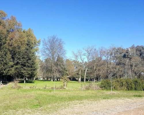 80 Has Campo Agrícola Sobre Ruta con Mejoras en Solís