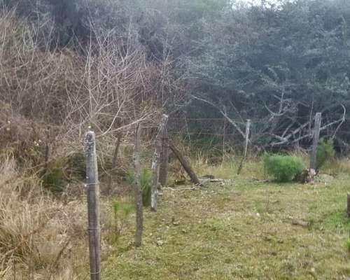 Vendo en Provincia de Cordoba (sierras Chicas)- 3 Hectareas