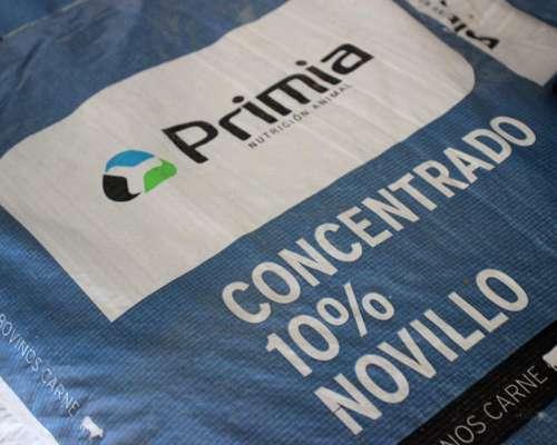 Concentrado 10% Novillo Pesado - Bovinos -
