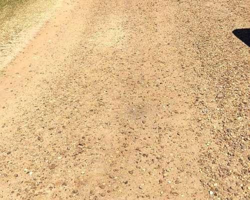 586 Has Agrícolas Gilbert, Gualeguaychú, E.ríos Campo Armado
