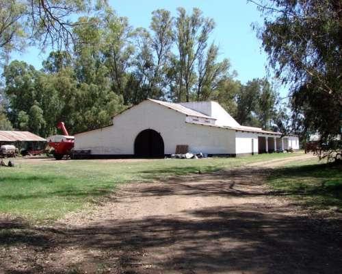 Ba2912 Campo en Venta 4200 Has. General Villegas