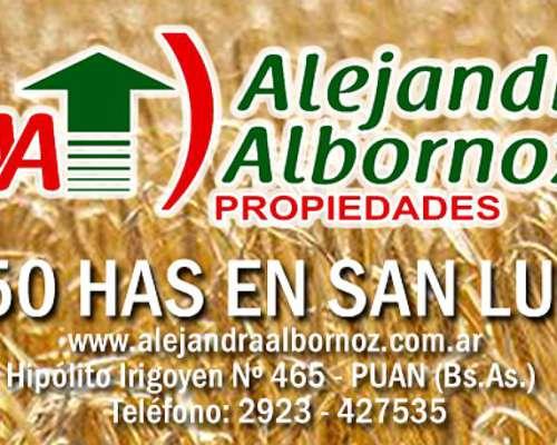 Alejandra Albornoz Vende Estancia en Partido de Puan