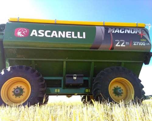 Tolva Autodescargable Ascanelli Magnun + 22 TN, 2019