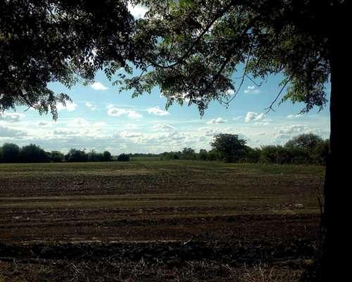 Estancia Agrícola Ganadera Entre Ríos