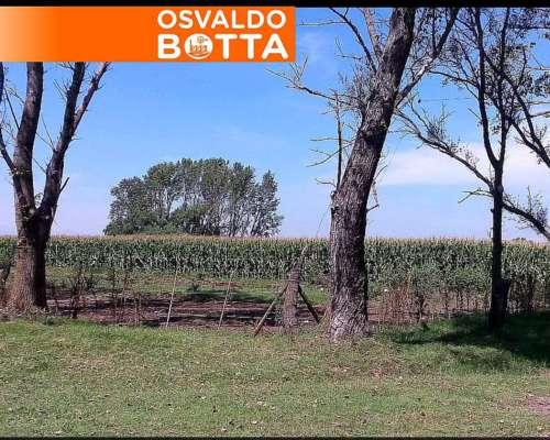 63 Has. Agrícolas Entre Ríos Urdinarrain U$S 5500