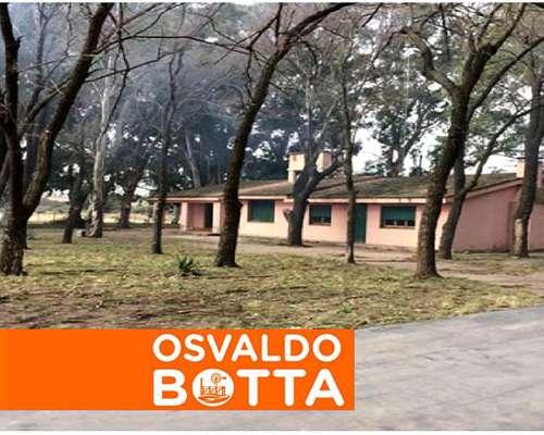 3000 Hectáreas en Río Cuarto, Córdoba