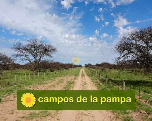 Venta Estancia 15.000 Ha - la Pampa