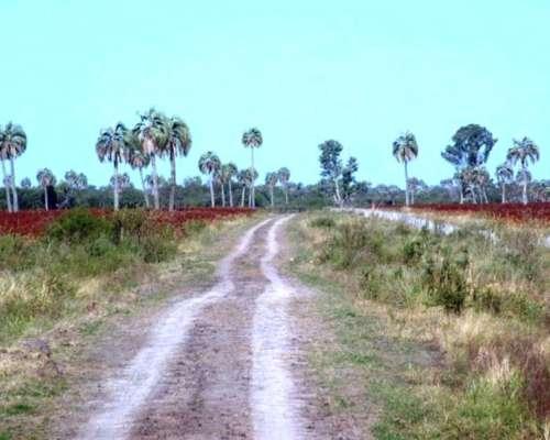 Venta de Campo Mixto 2000 Has Federal, Entre Ríos