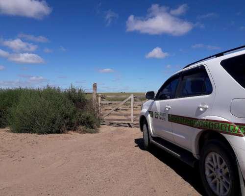 2.800 Ha Gran Estancia en Patagones