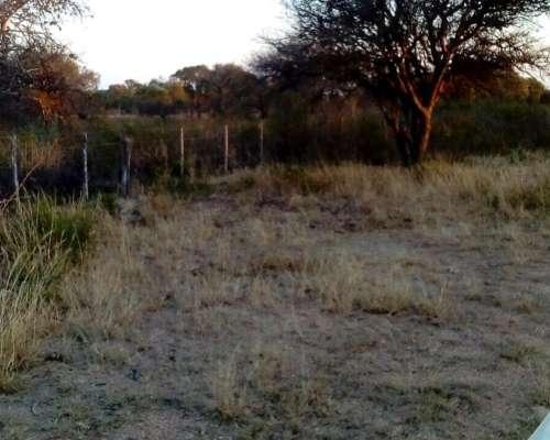 Campo en Santiago del Estero