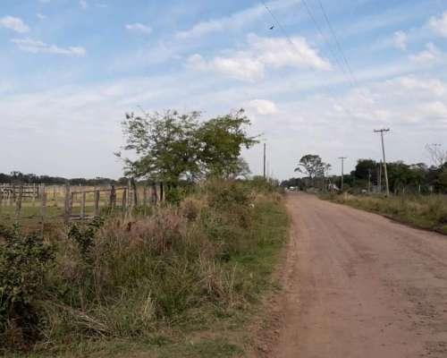 Vendo 366 Hectáreas en Paso de la Patria, Corrientes