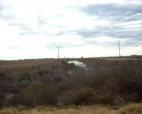 Campo Mixto, Ruta Prov 3, Canals, Escucho Ofertas