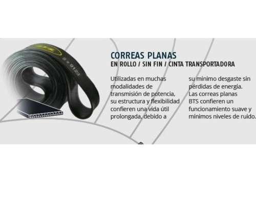 Correas Planas sin Fin para Desmalezadora 5 X 8320